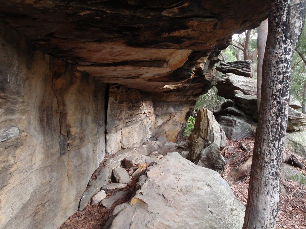 One of the large overhangs at Callicoma Caves
