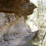 Track beneath cave (15457)