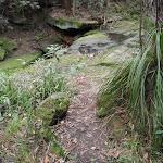 A scene on Nyrippin creek (154591)