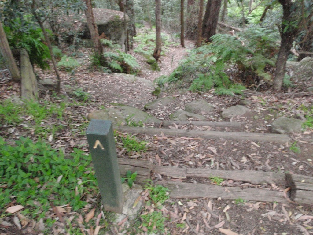 Track marker on the Callicoma Walk (154651)