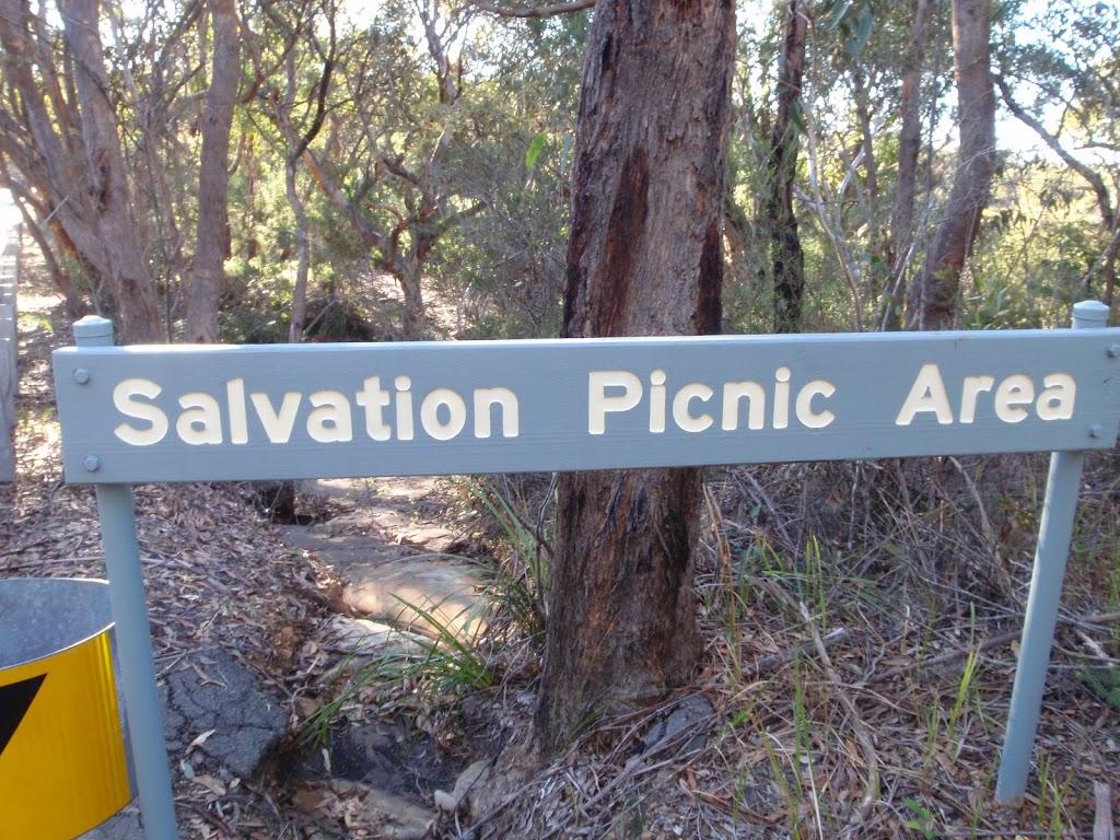 Salvation Loop picnic area