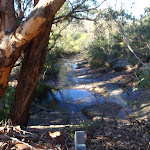 Salvation Creek from West Head Rd (154990)