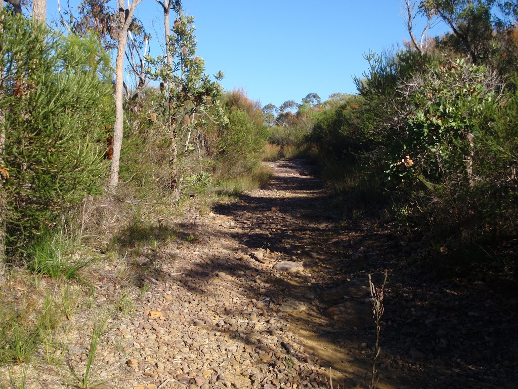 A stretch of the Salvation Loop track