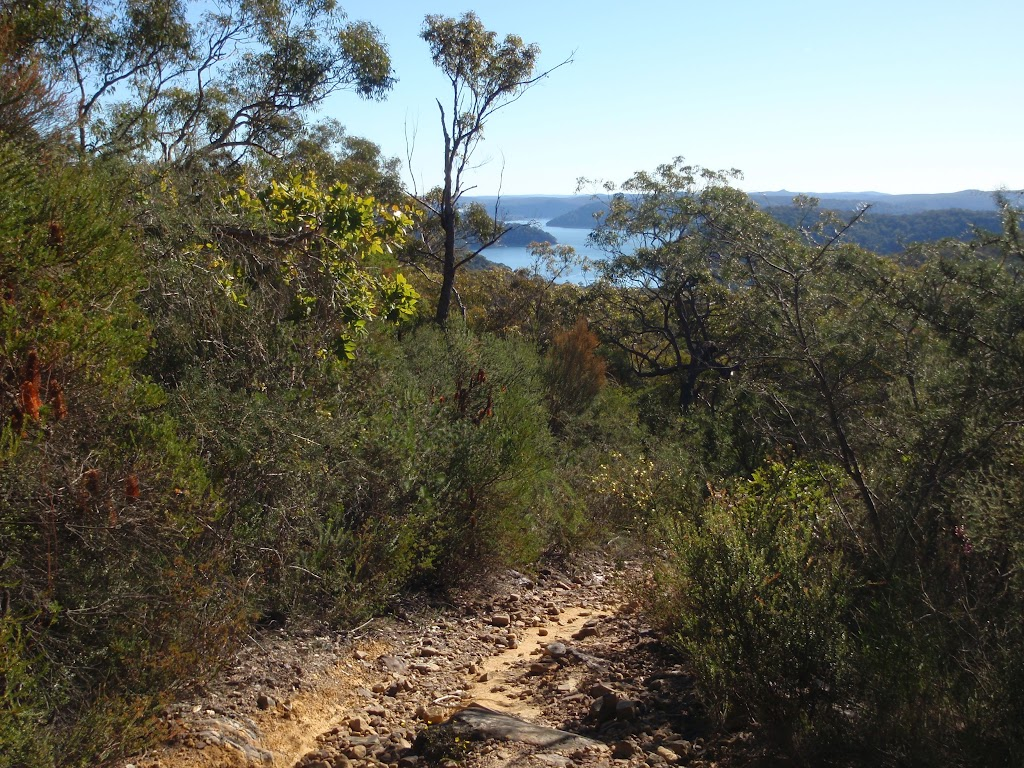 Glimpses of a distant Cowan Waters