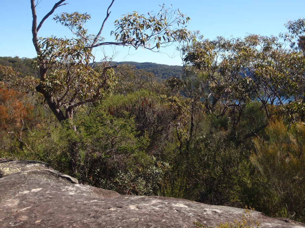 Views from the end of Yeomans track