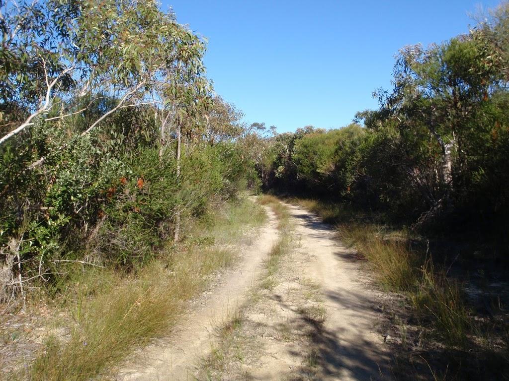Easy walking on the Salvation Loop track