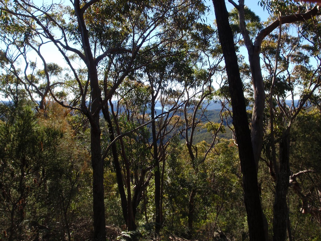 Glimpses through the trees on the Willunga track