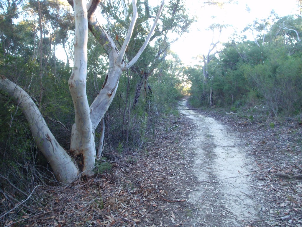 A nice scene along the Topham track