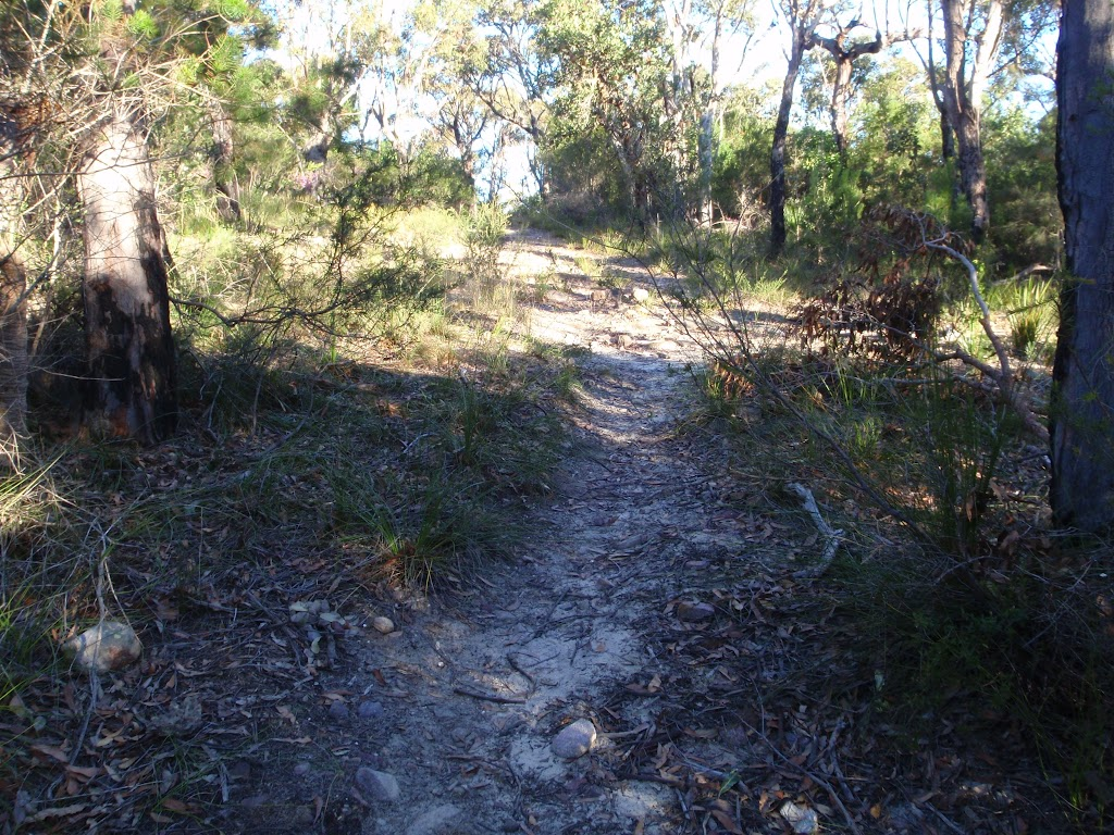Meandering along Topham track