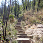 Cliff Top Track stairs