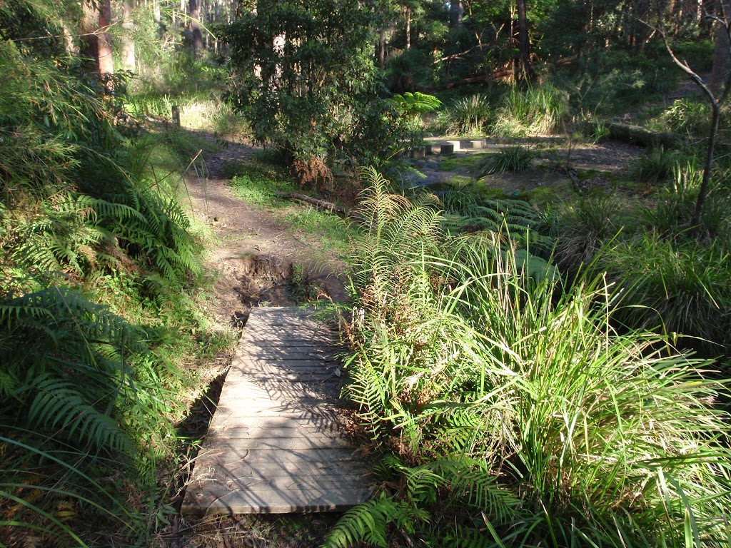 Short boardwalks along Disturbed creek (156928)