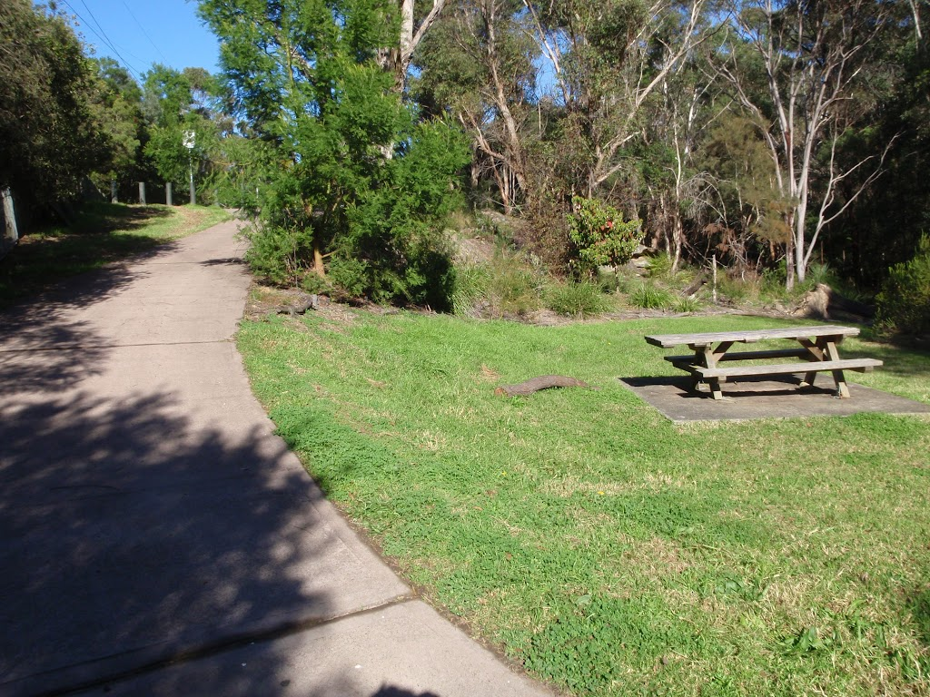 Picnic spot near the end of Bellamy St