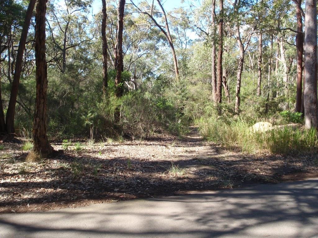 Side track near Schofield Pde (158197)