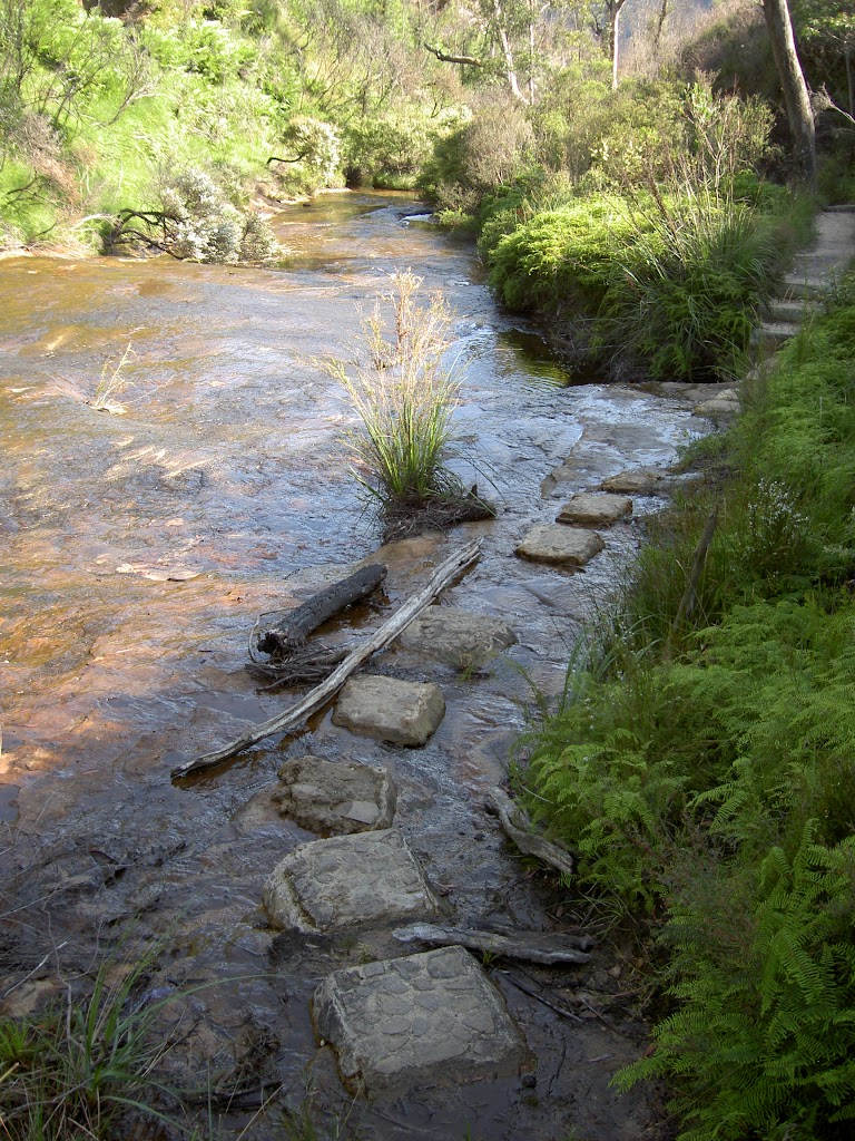 Stepping stones one Braeside Track