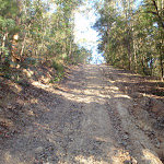 The steep climb out from Popran creek (162040)