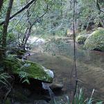 Popran creek (162130)