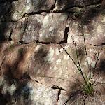 Interesting rock work