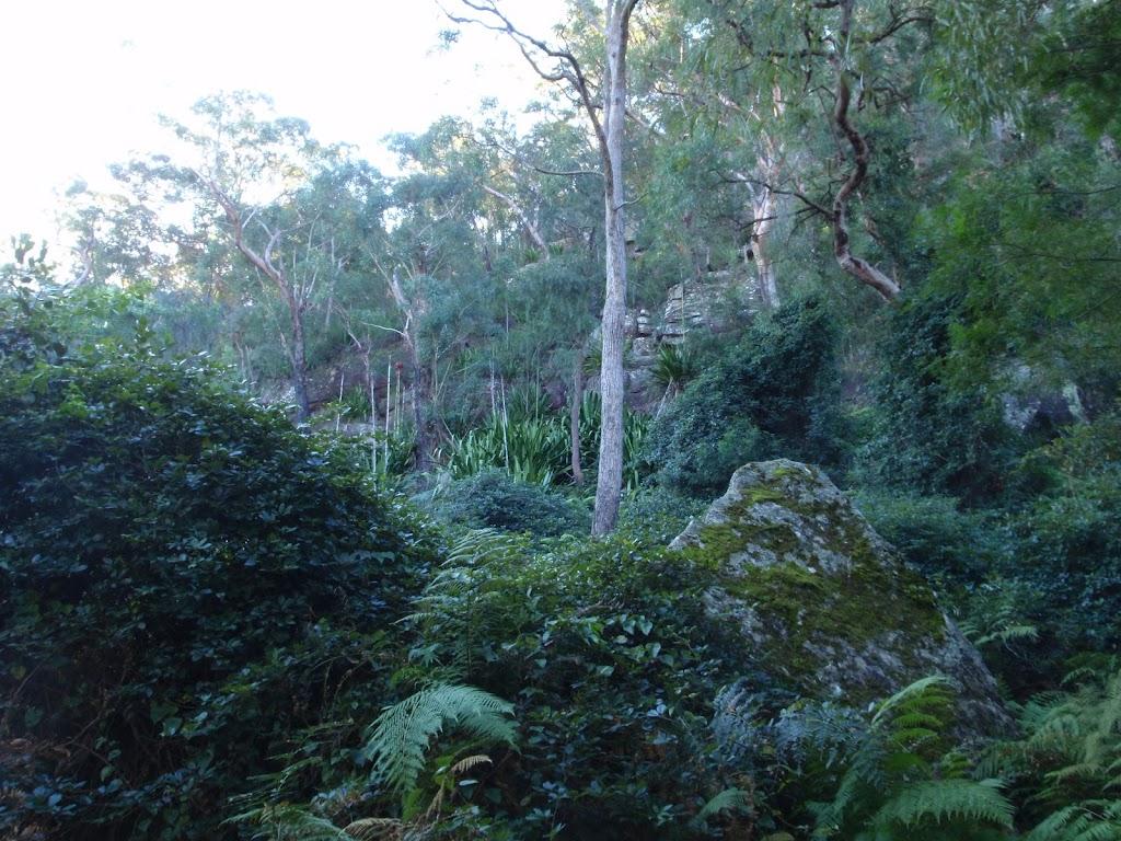 Beautiful scenery  along Finchs Line