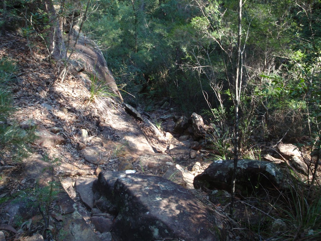 Steep and rocky section of track (166216)