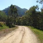 Walking through the old farm land (167033)