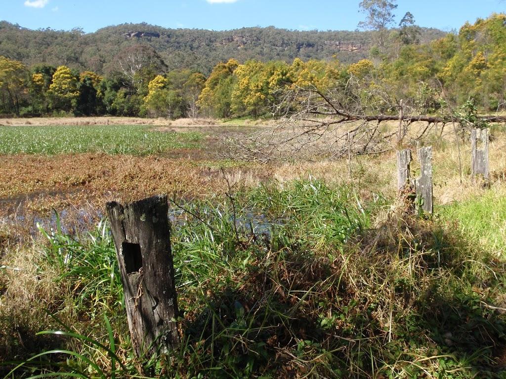 Park Gully wet land