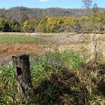 Park Gully wet land (167468)