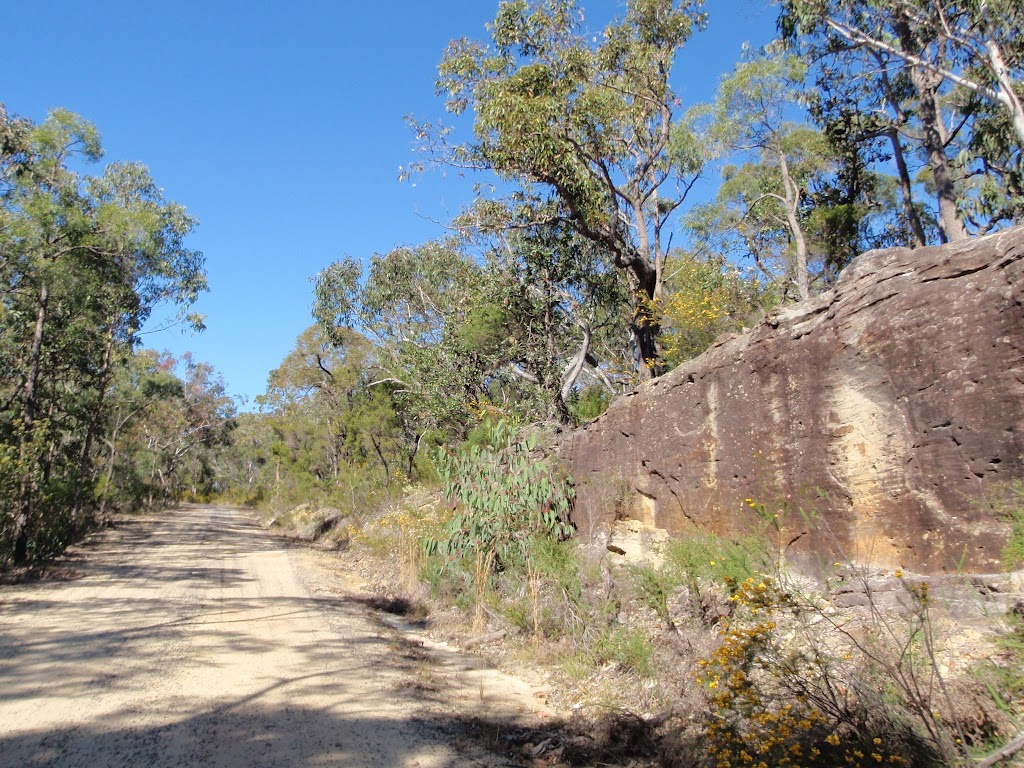A cutting in the sandstone on the Western Commission track (168896)