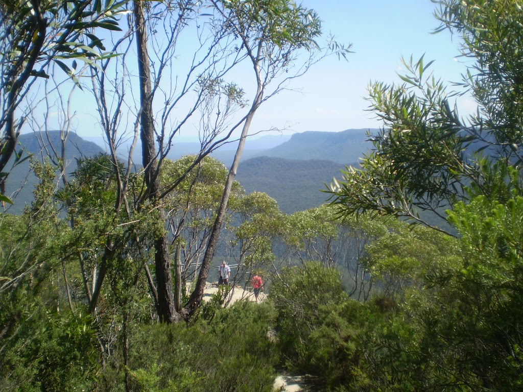 Looking down at the Lady Darley Lookout