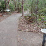 Water in Bungoona picnic area