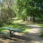 Katoomba falls park (17107)