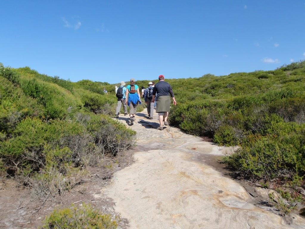 Walking across Jibbon Head
