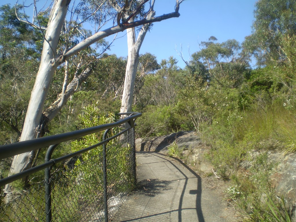 Track from Reids Plateau