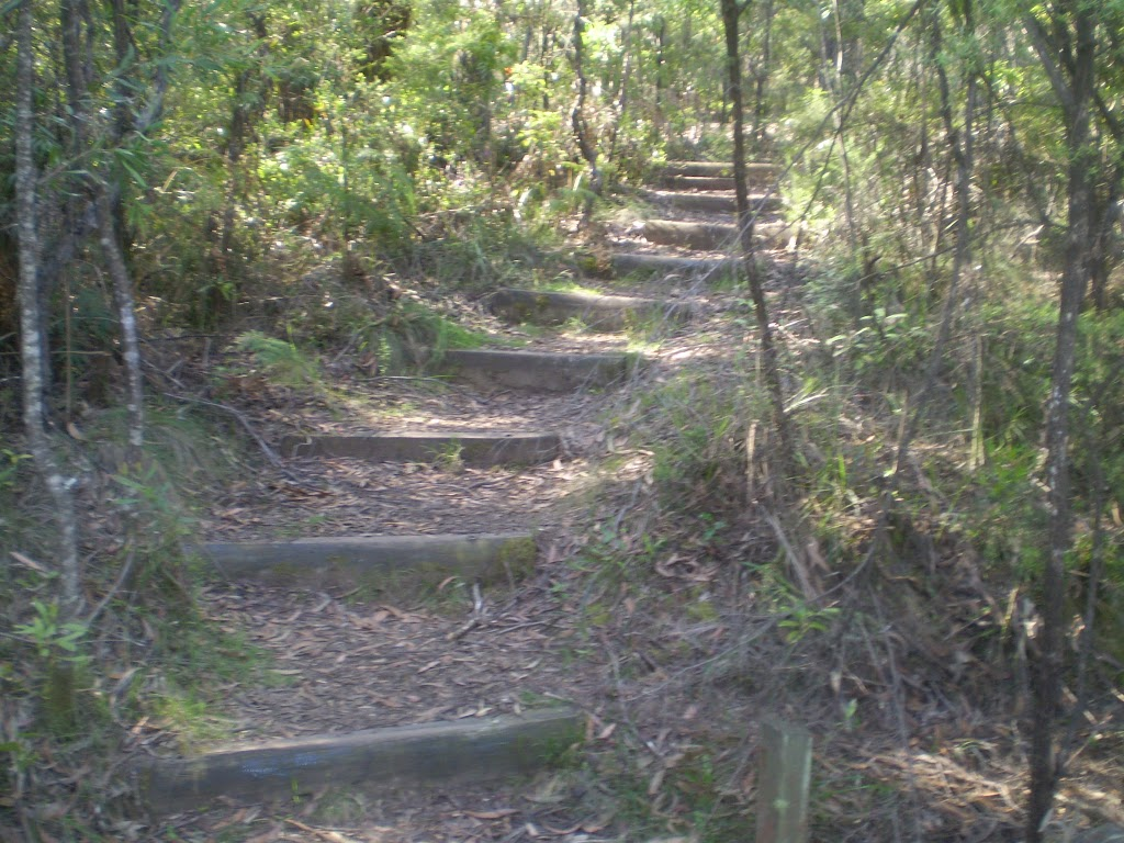 The trail between the Kiosk and Scenic World
