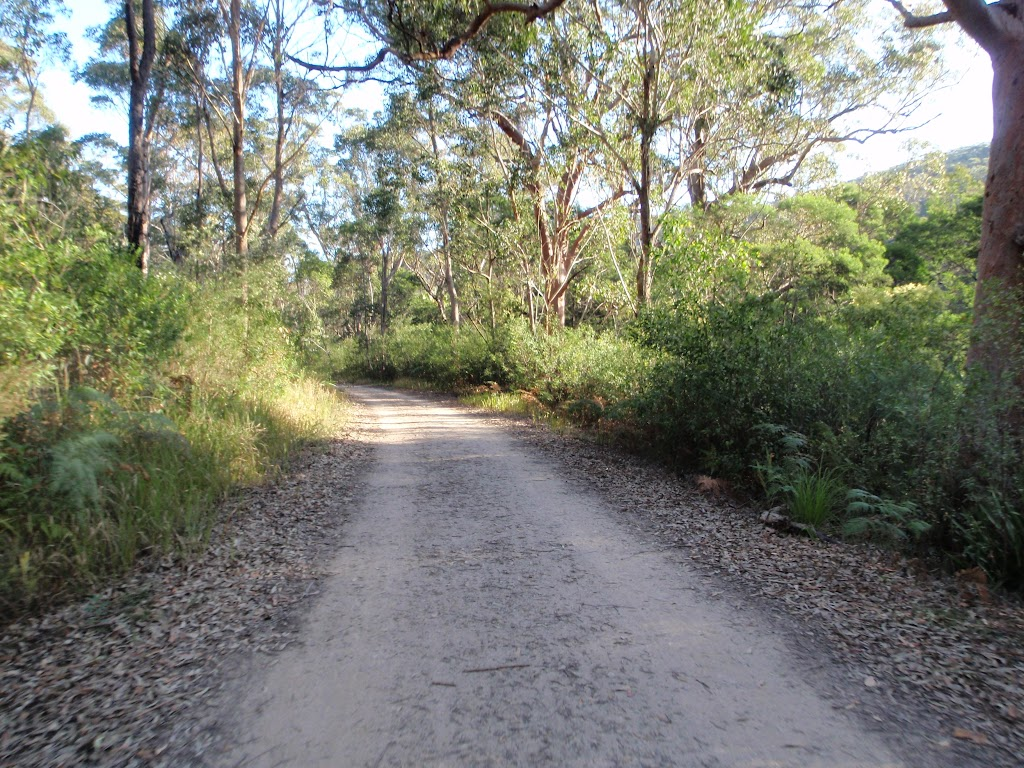Walking along Lady Carrington Drive