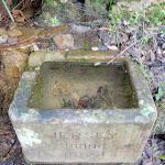 Jersey Spring (172929)