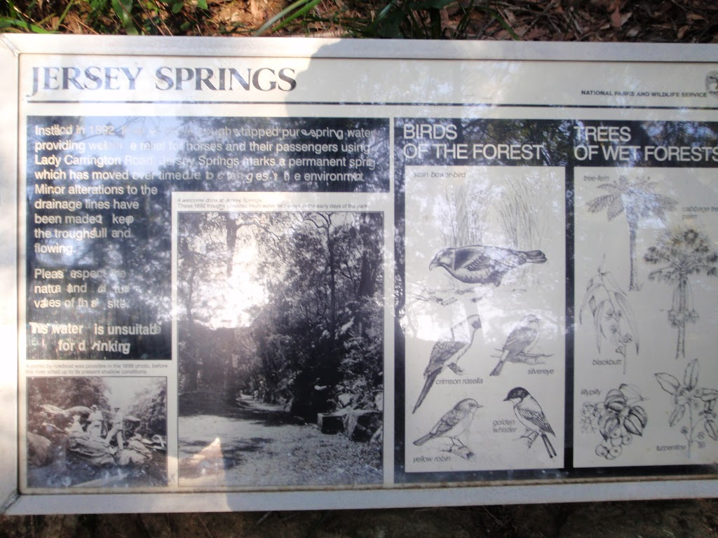 Information sign at Jersey Spring