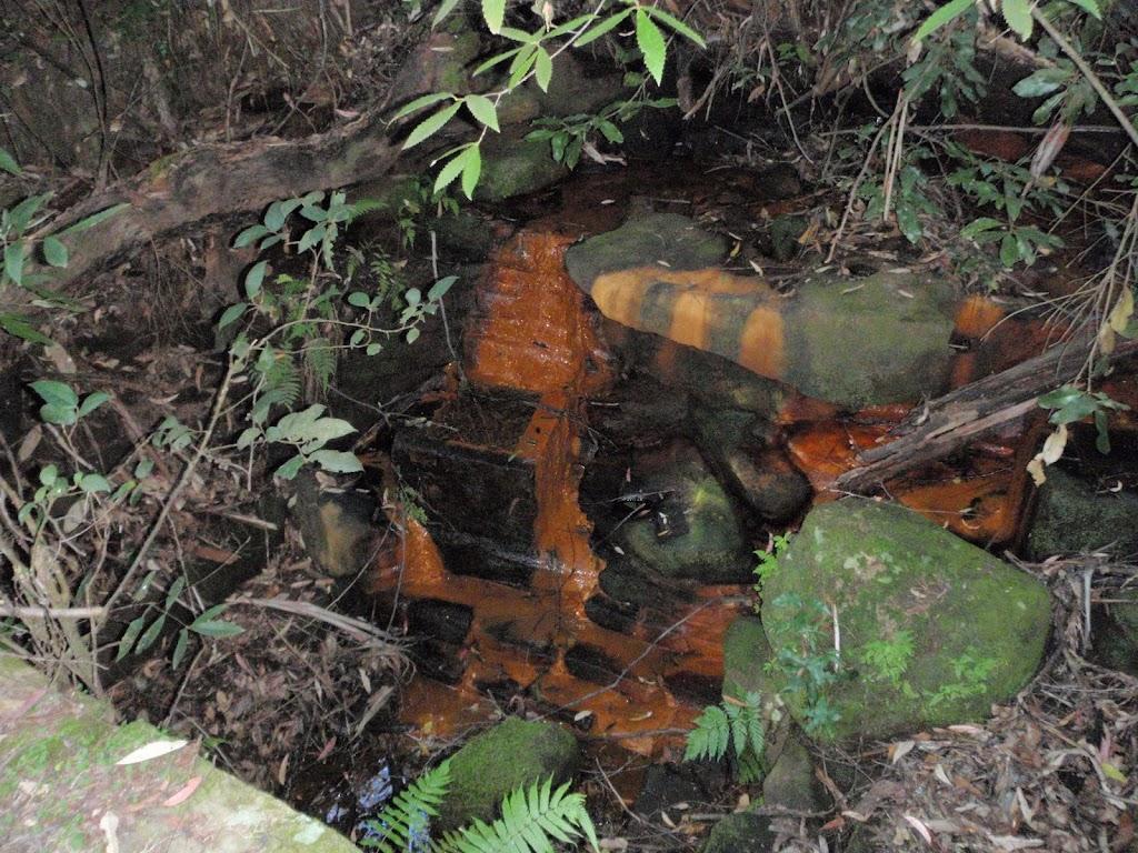 A trough in Kobardo Brook