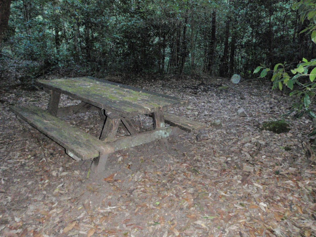 Palona Brook Picnic area