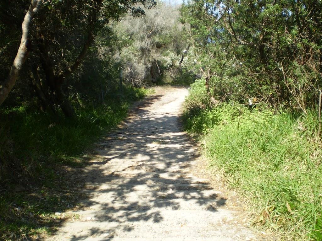 Henry Head Track near La Perouse (17529)