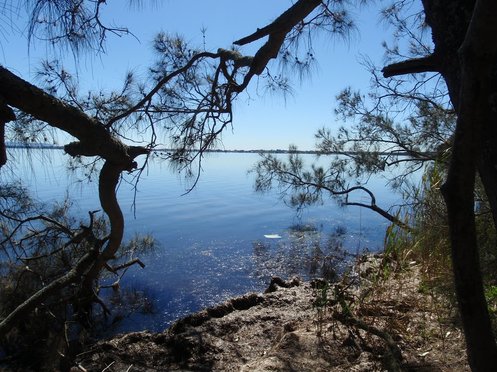 Lovely vista across Tuggerah lake (175980)