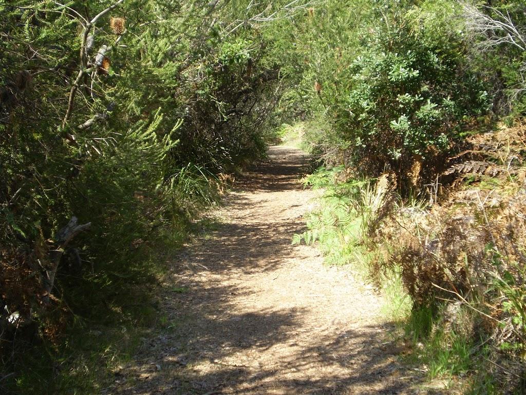 Track near La Perouse (17649)