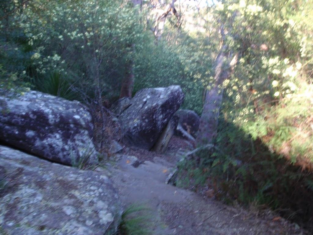 Track below 1st Falls lookout