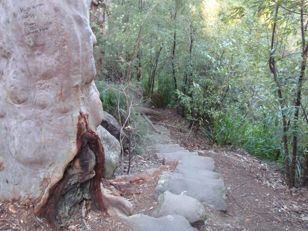 Stone steps (176973)
