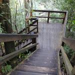 Steps to bottom falls (177186)