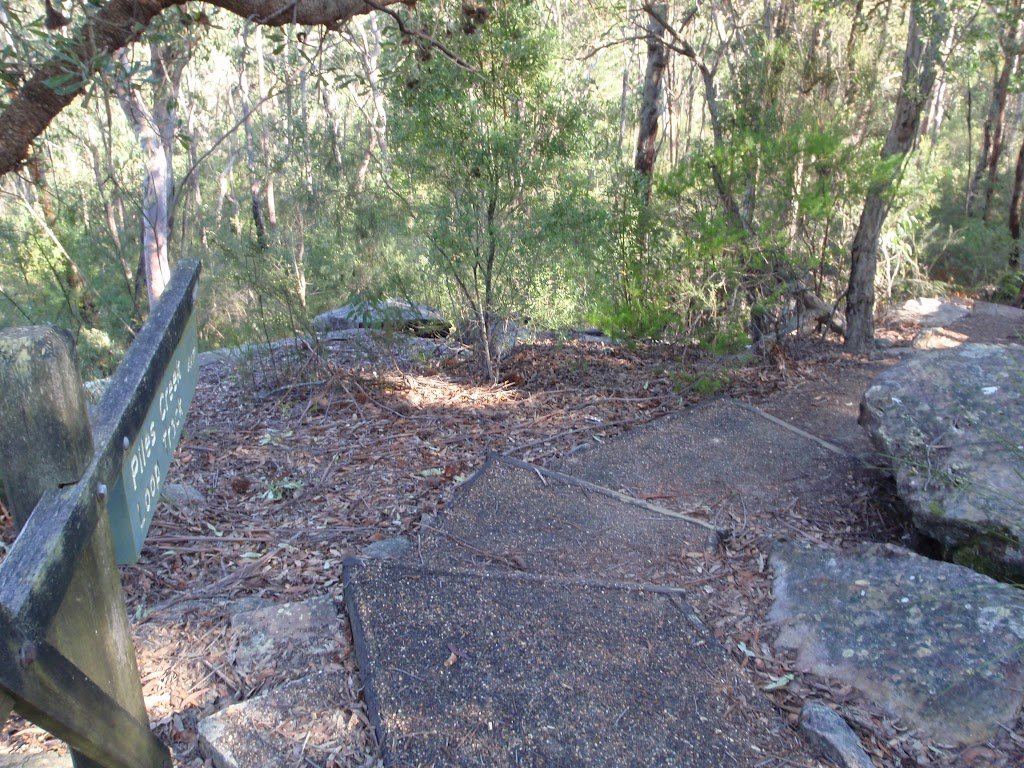 Stairs below Girrakool picnic area