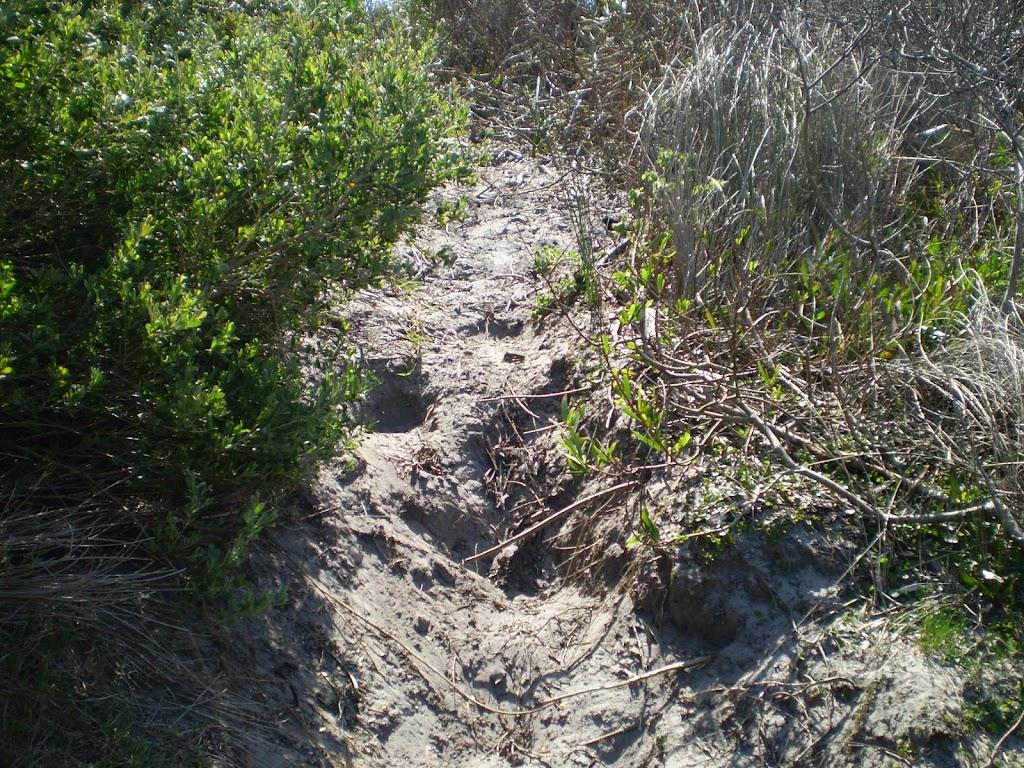 Sandy track, near La Perouse