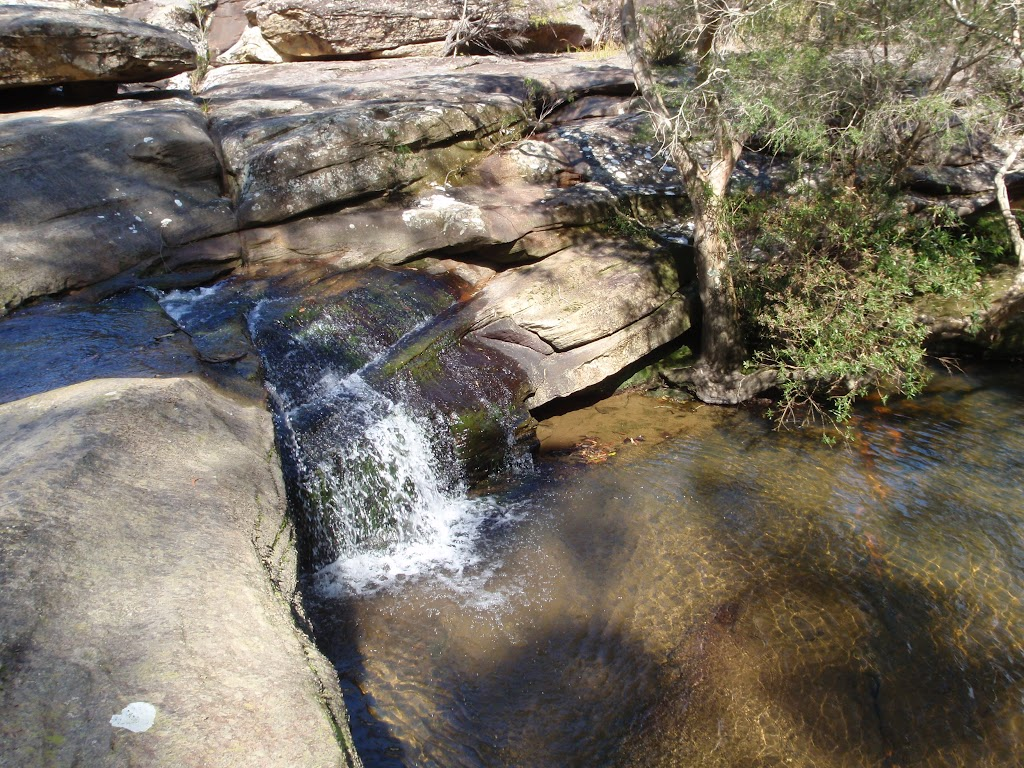 Piles Creek Cascades (179955)