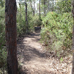 Track between Girrakool Picnic Area and Illoura lookout (180018)