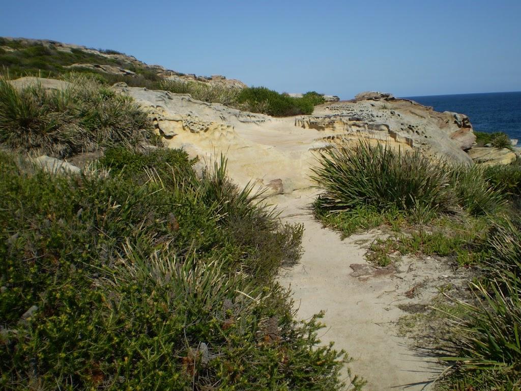 Sandy coastal track