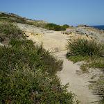 Sandy coastal track (18147)
